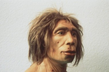 Scientists sequence the genome of 45,000 year old man
